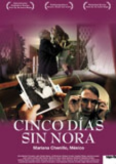 Cinco dias sin Nora (Flyer)