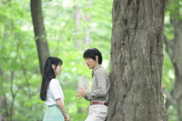Photo: Norwegian Wood - Noruwei no mori