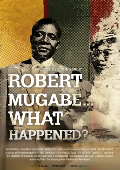 Robert Mugabe - What happened? flyer